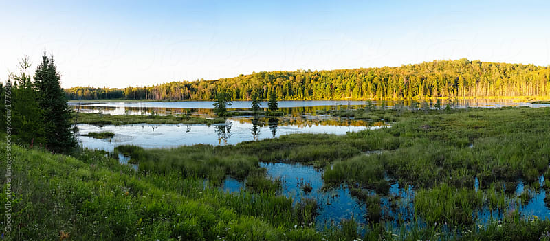 Canadian Landscape by Good Vibrations Images for Stocksy United