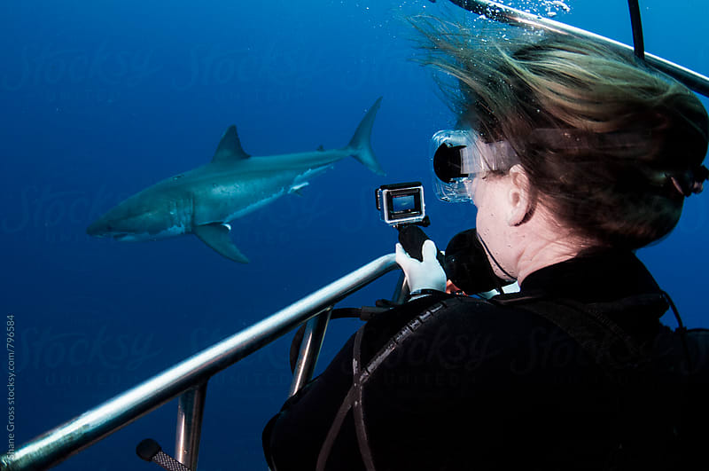 Filming a Great White Shark by Shane Gross for Stocksy United