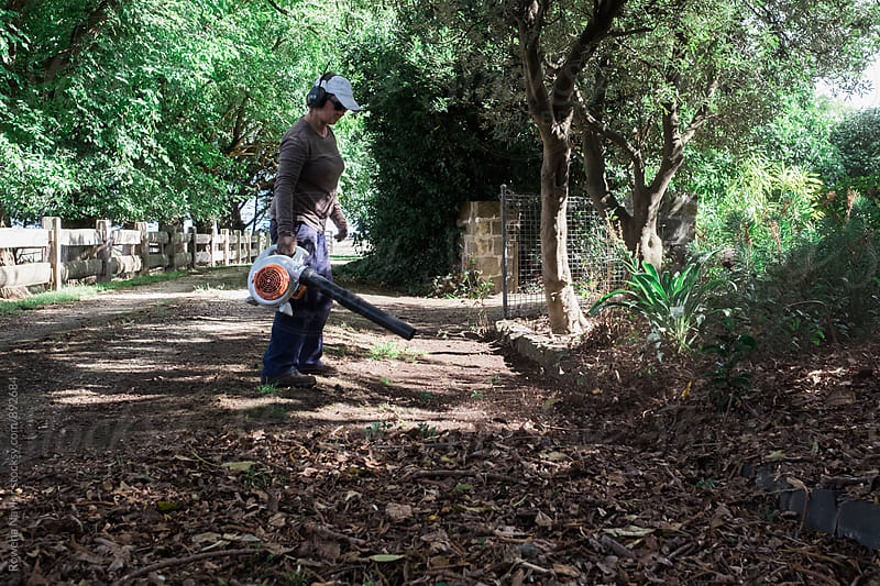Gardener clearing driveway of leaves by Rowena Naylor for Stocksy United