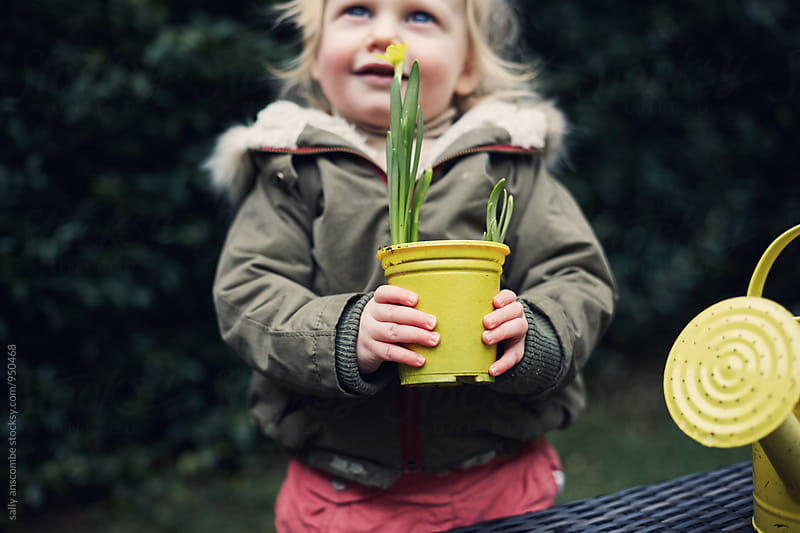 Little girl holding a daffodil plant by sally anscombe for Stocksy United