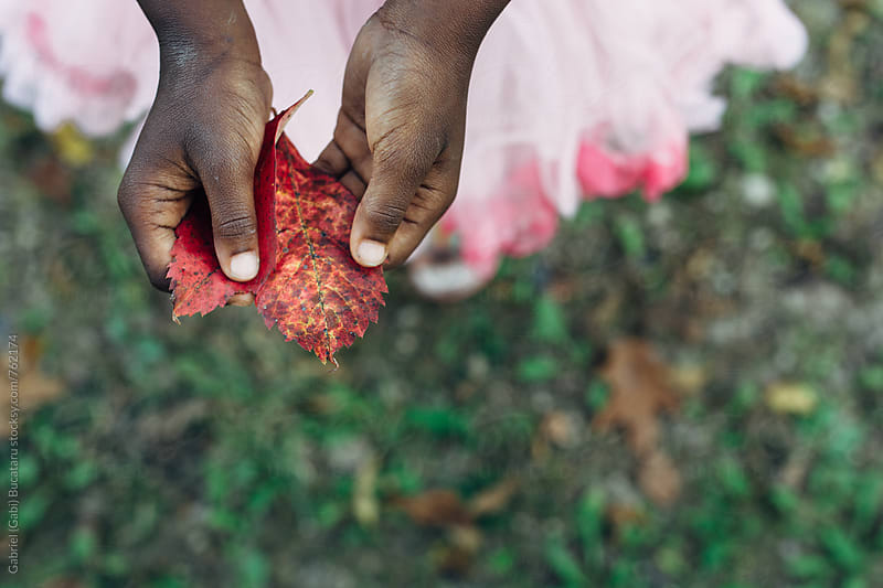 African American girl holding red leaves in her hands by Gabriel (Gabi) Bucataru for Stocksy United