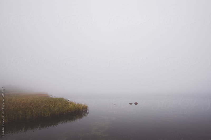 a lake in the mist by Christian Zielecki for Stocksy United