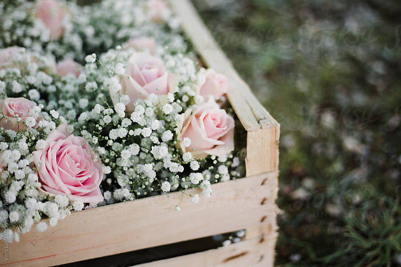 Small bouquets in a wooden crate by Vera Lair for Stocksy United