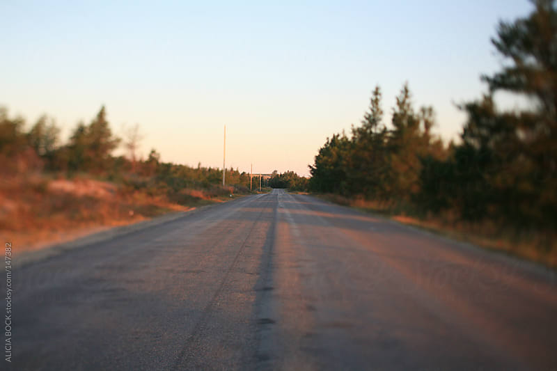 Empty Summer Road by ALICIA BOCK for Stocksy United
