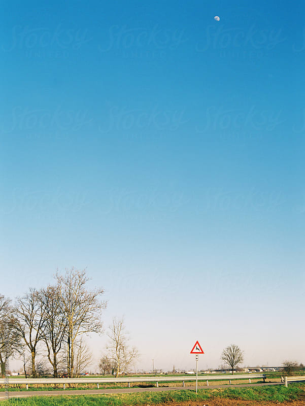 Moon and deer road sign shot on film by Laura Stolfi for Stocksy United