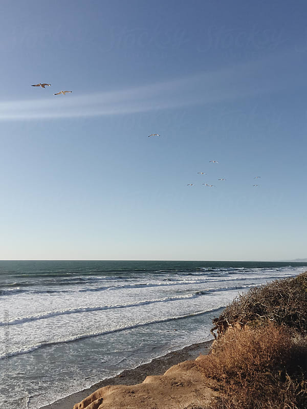 Coastal View by Jesse Weinberg for Stocksy United