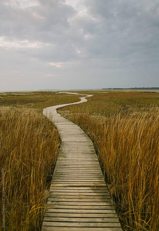 Boardwalk in Autumn Marsh Cape Cod by Raymond Forbes LLC for Stocksy United