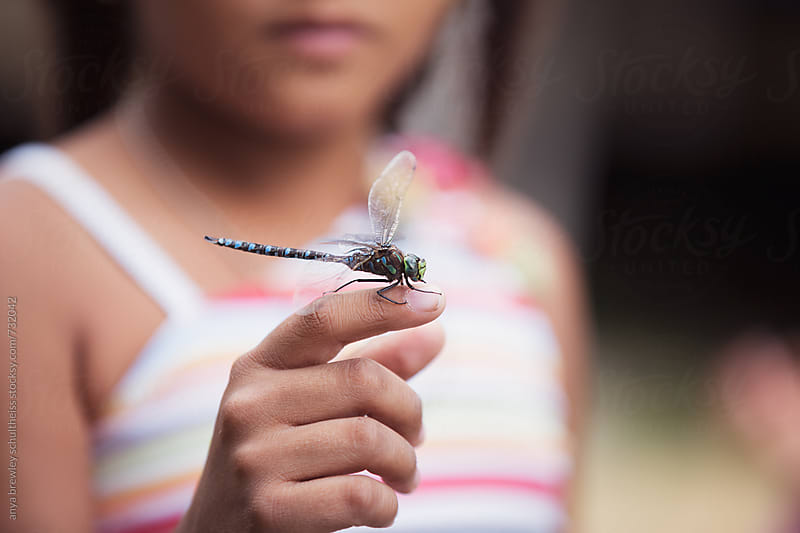 Closeup of a young girl holding a dragonfly on her finger by anya brewley schultheiss for Stocksy United