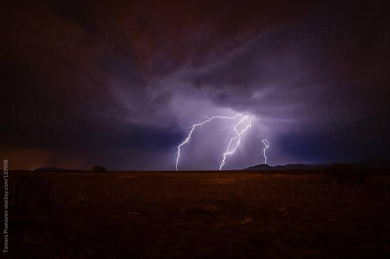 Lightning Strikes At Night by Tamara Pruessner for Stocksy United