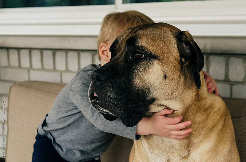 little boy hugs his very big dog by Margaret Vincent for Stocksy United