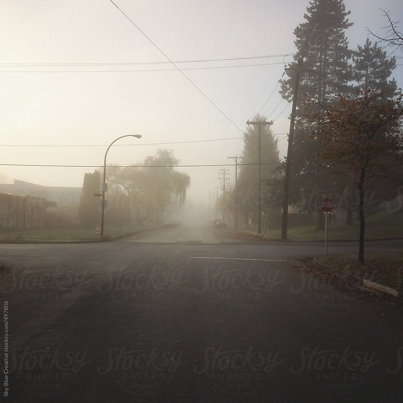 Vancouver street in morning fog by Luca Pierro for Stocksy United