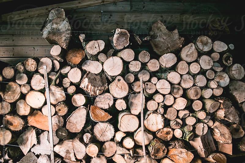 Firewood by Sophia van den Hoek for Stocksy United