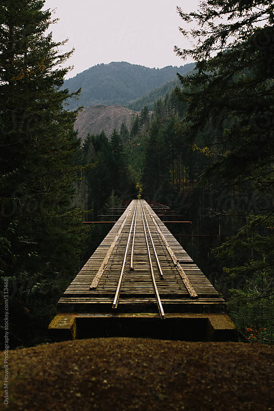 Vance Creek Bridge by Dylan M Howell Photography for Stocksy United