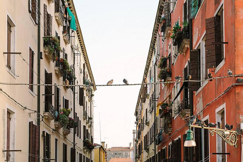 Venice buildings by Sam Burton for Stocksy United