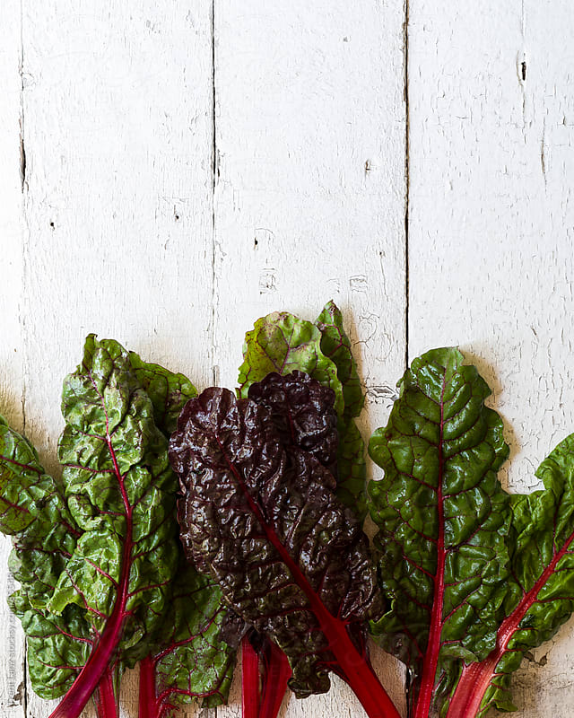 Close-up of Swiss chard leaves of fresh salad by Trent Lanz for Stocksy United