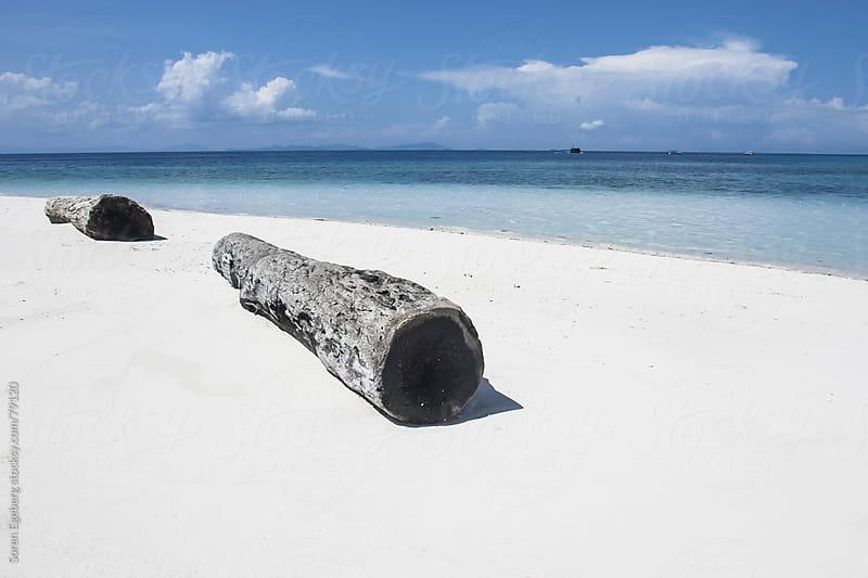 Old drift wood logs on tropical island beach by Soren Egeberg for Stocksy United