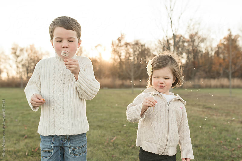 Brother And Sister Blow On Dandelions At The Same Time by Alison Winterroth for Stocksy United