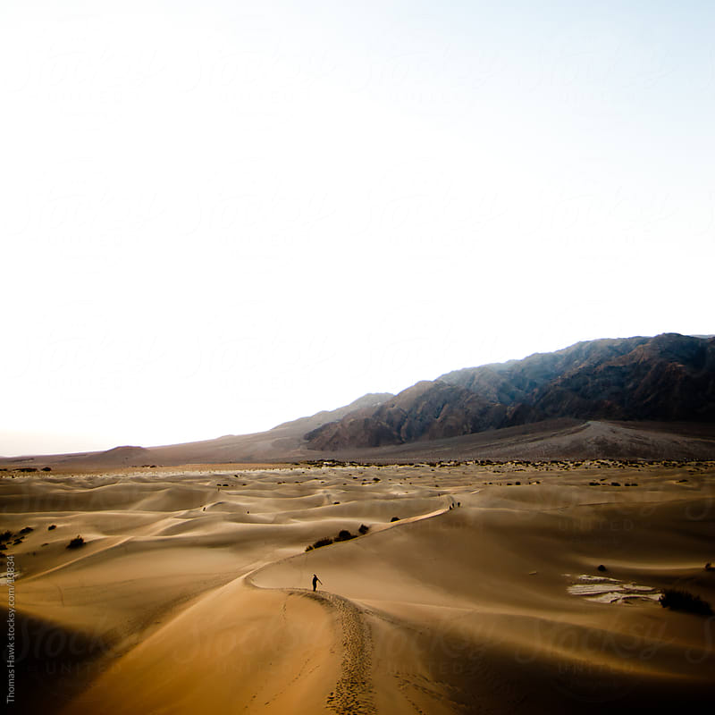 Death Valley desert scene by Thomas Hawk for Stocksy United