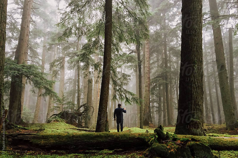 A man stands waiting in a foggy forest by TJ Macke for Stocksy United