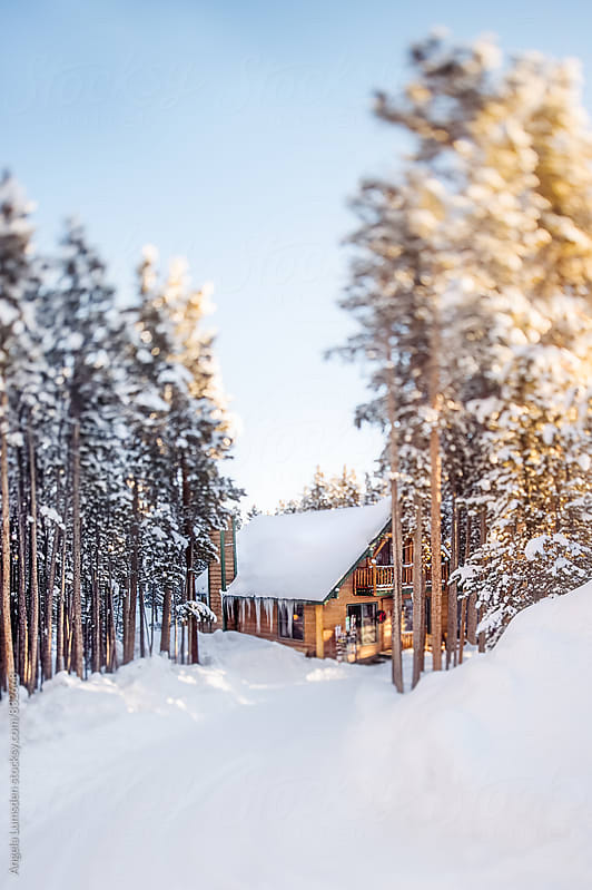 A small cabin surrounded by snow and trees on a sunny morning after a storm by Angela Lumsden for Stocksy United
