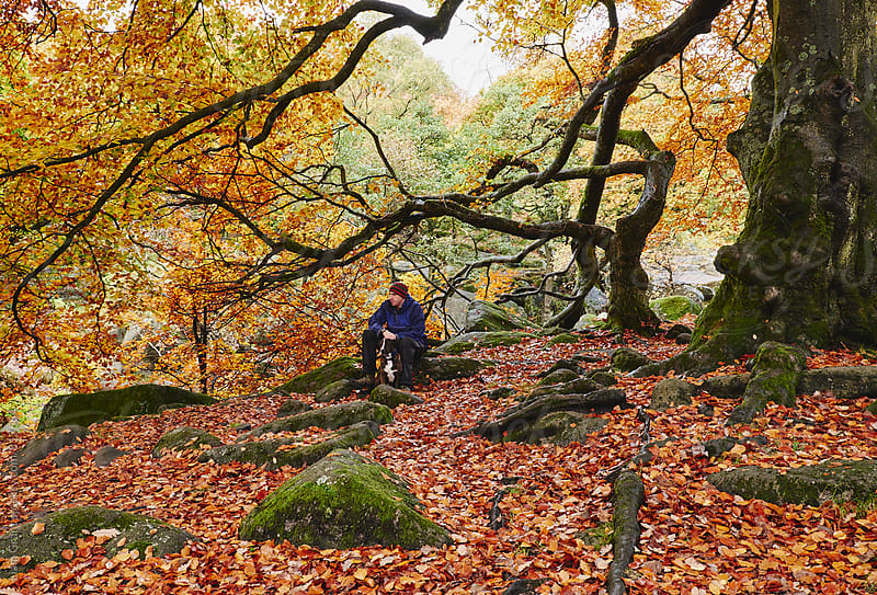 Male and his dog in autumnal woodland. Padley Gorge, Derbyshire, UK. by Liam Grant for Stocksy United