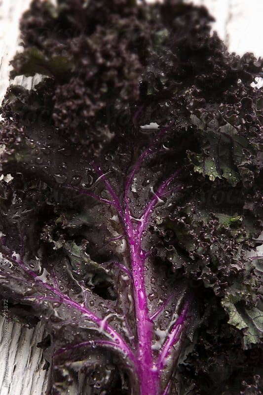 Organic Purple Kale by Jeff Wasserman for Stocksy United