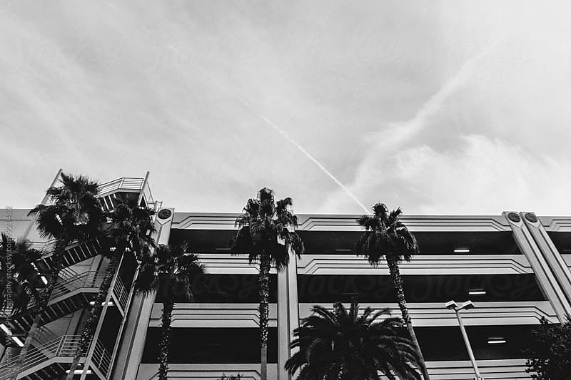 Parking garage and palm trees by Joseph West Photography for Stocksy United