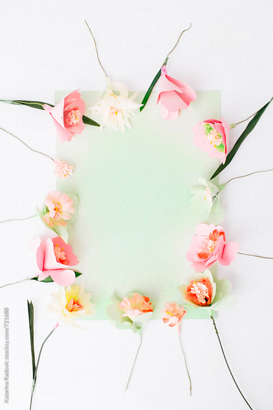 Paper Flowers Arranged with a Green Pastel Background by Katarina Radovic for Stocksy United