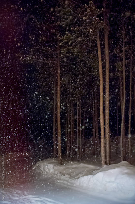 Snow falling at night by Angela Lumsden for Stocksy United