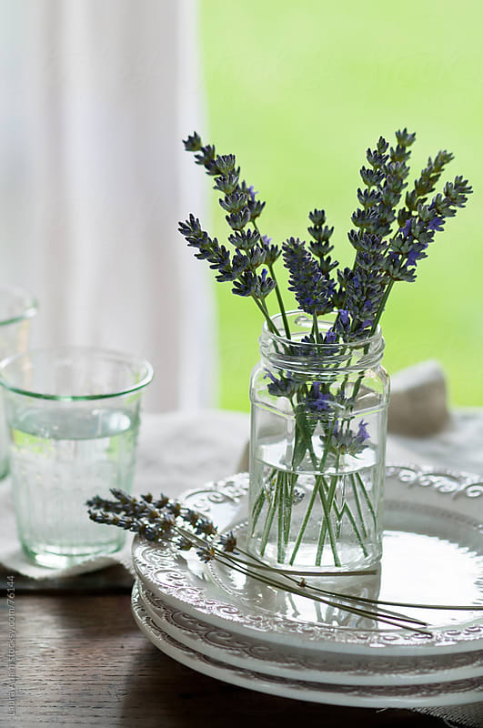 a glasses jar with some lavender sprigs by Laura Adani for Stocksy United