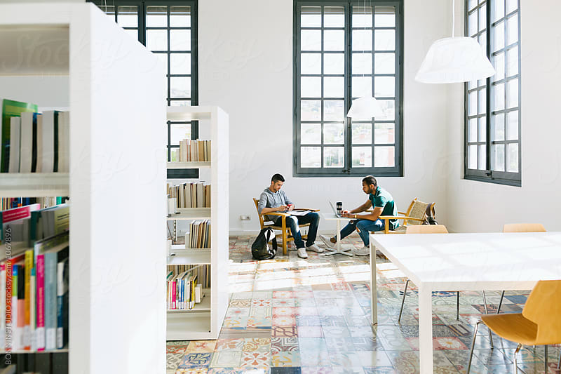College students studying in a beautiful library. by BONNINSTUDIO for Stocksy United