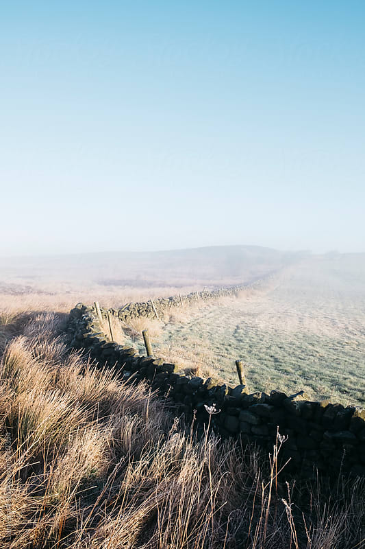 Curved wall in the frost and fog on Beeley Moor at sunrise. Derbyshire, UK. by Liam Grant for Stocksy United