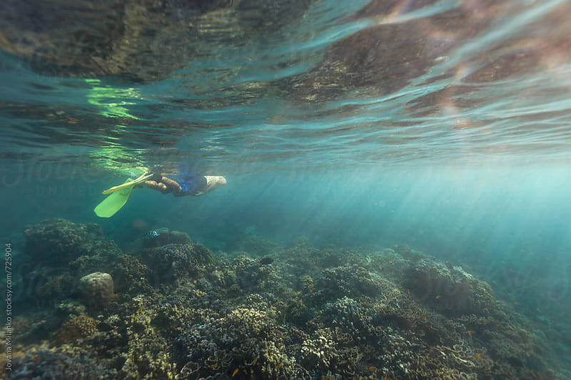 Young man snorkeling in shallow sea water of Bali over the coral reef by Jovana Milanko for Stocksy United