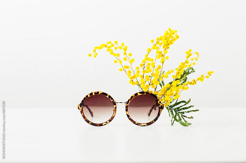 Sunglasses and yellow mimosa flower. Springtime. by BONNINSTUDIO for Stocksy United
