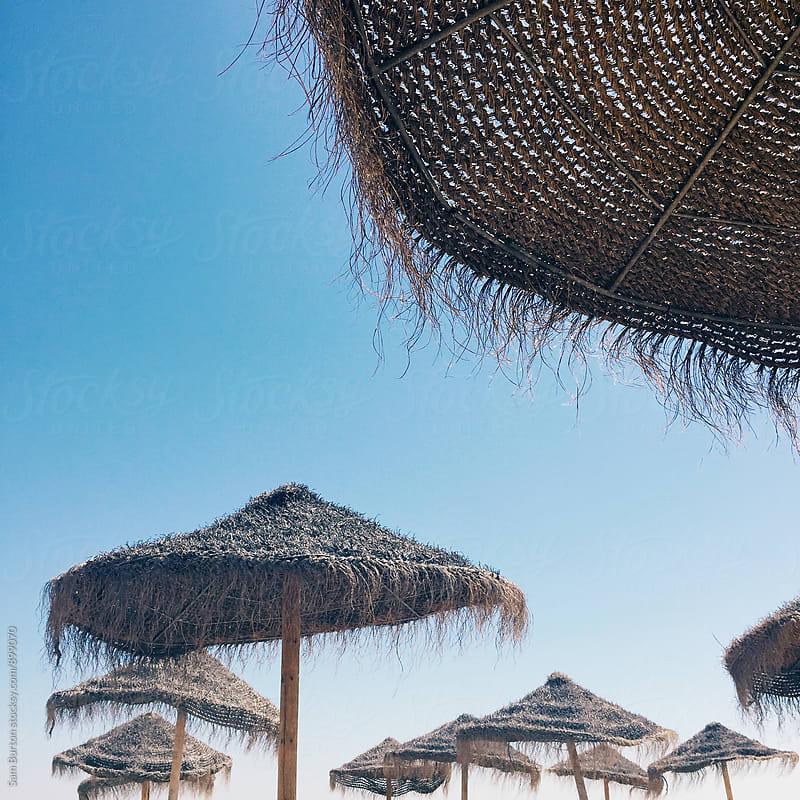 Beach umbrellas by Sam Burton for Stocksy United