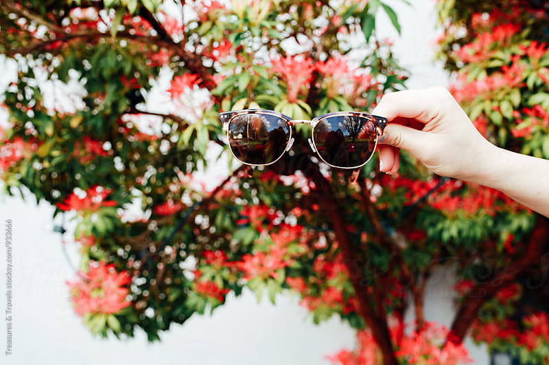 Sunglasses in front of spring flowers by Treasures & Travels for Stocksy United