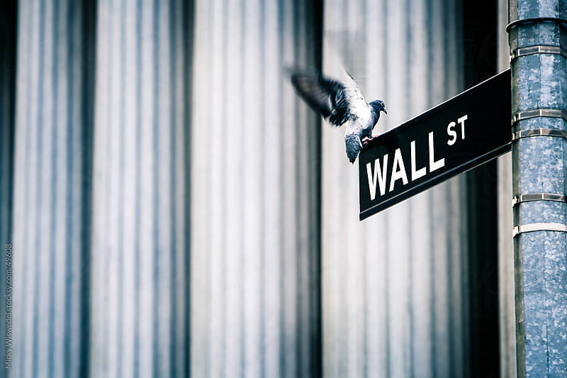 Wall Street sign with pigeon landing by Micky Wiswedel for Stocksy United