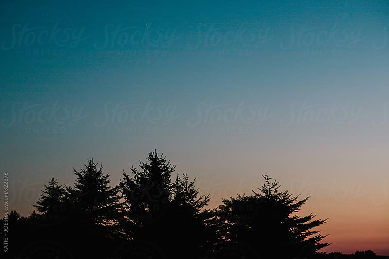 pine trees silhouetted at a colorful sunset by KATIE + JOE for Stocksy United