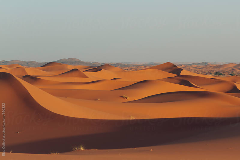Desert dunes landscape by Blue Collectors for Stocksy United