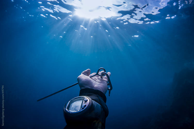 Divers hand with pointer stick and dive computer reaching out to sun light underwater in the ocean by Soren Egeberg for Stocksy United
