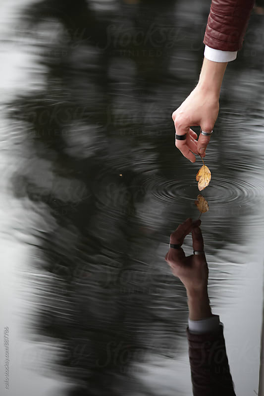 Woman touching water surface with autumnal yellow leaf. Unrecognizable. by rolfo for Stocksy United