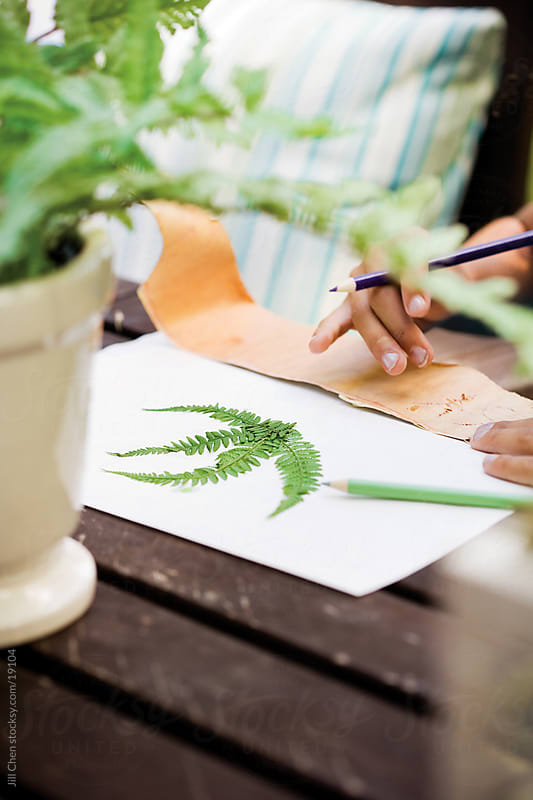 Outdoor Crafts by Jill Chen for Stocksy United
