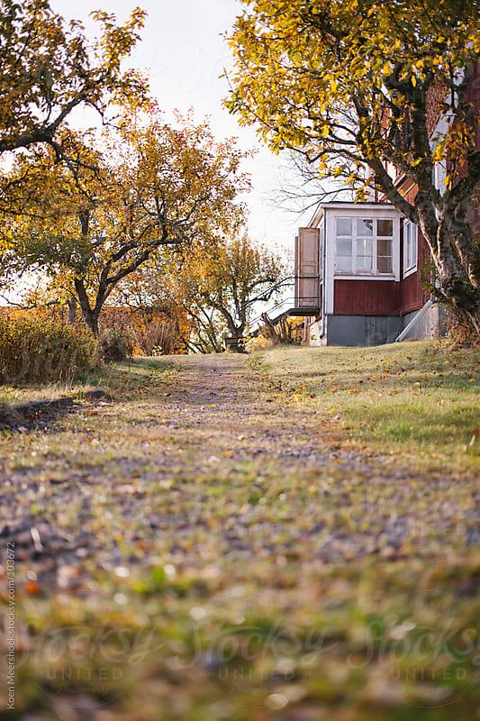Garden path to a old house with open doors by Koen Meershoek for Stocksy United