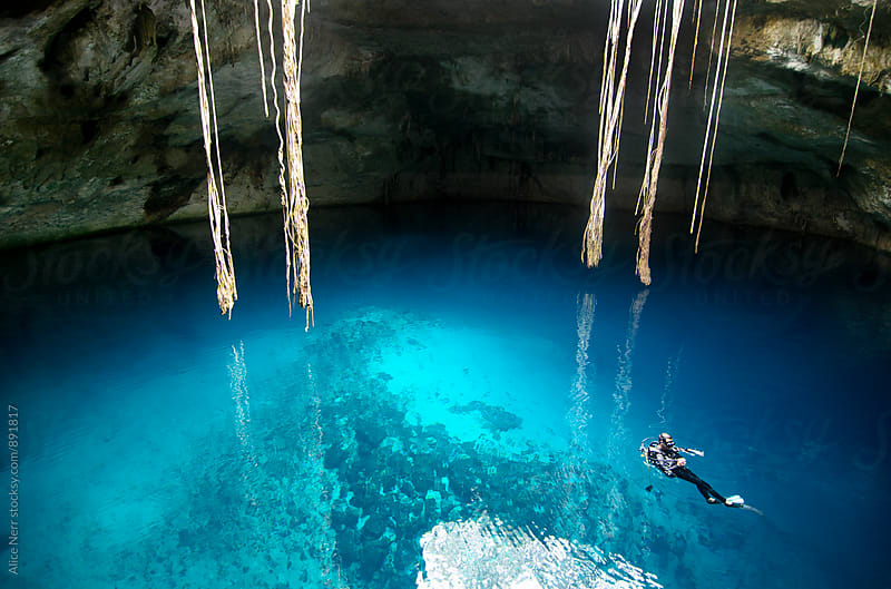Diver in caved cenote with lianas hanging from the top by Alice Nerr for Stocksy United