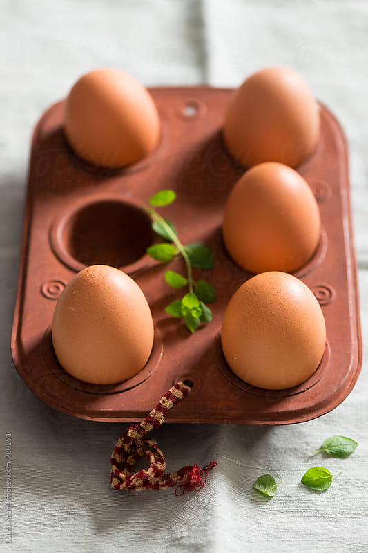 Brown Chicken eggs in an egg tray by Laura Adani for Stocksy United