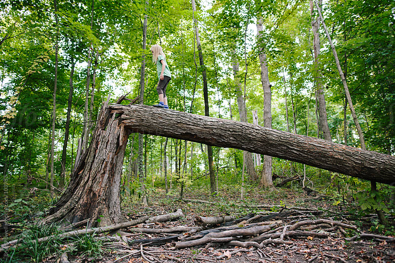 girl balancing on a fallen tree by Brian Powell for Stocksy United