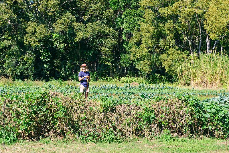 farmer in the field by Gillian Vann for Stocksy United