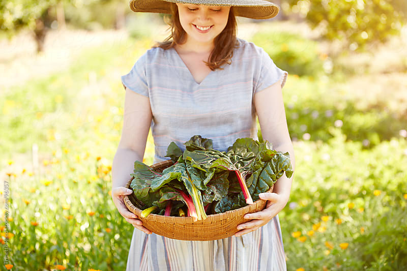 Woman farmer holding fresh picked chard from her organic garden by Trinette Reed for Stocksy United