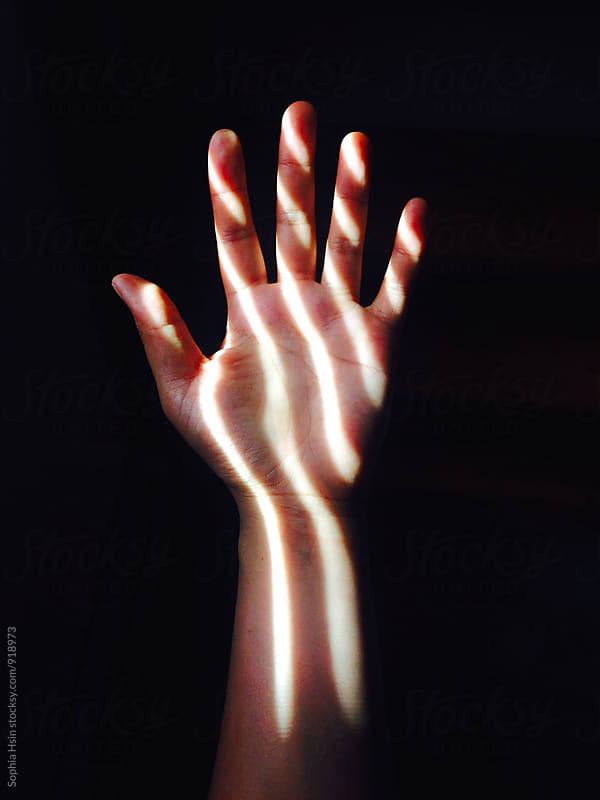 Hand in the Light by Sophia Hsin for Stocksy United
