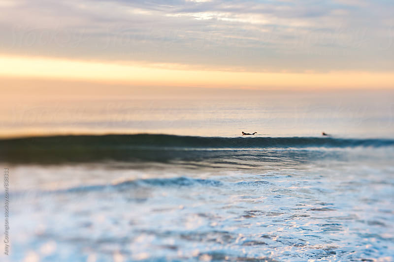 Two surfers paddling out to catch a wave by Amy Covington for Stocksy United